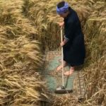 film still of woman sweeping